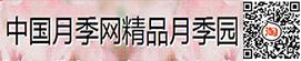 中国月季网B2B平台